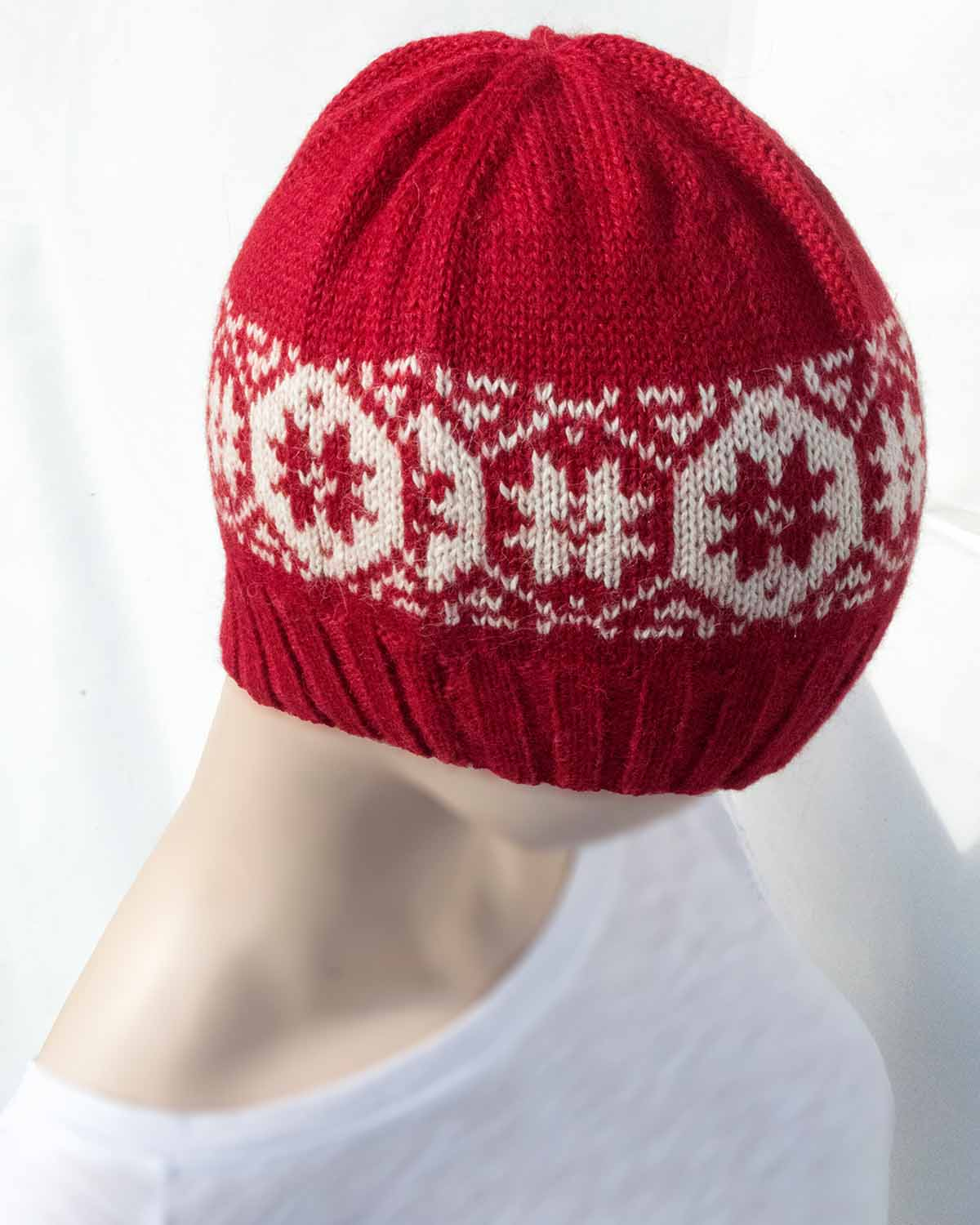 ETERNAL ALPACA BEANIE- back
